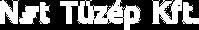 logo-nettuzep-30